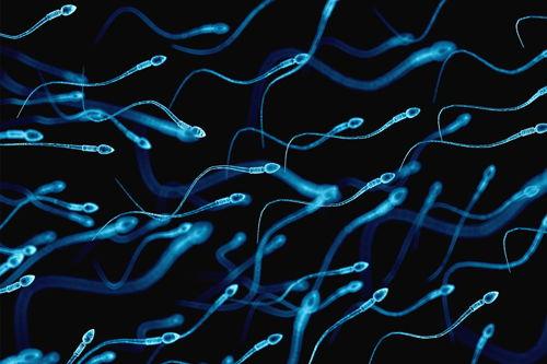 come aumentare lo sperma